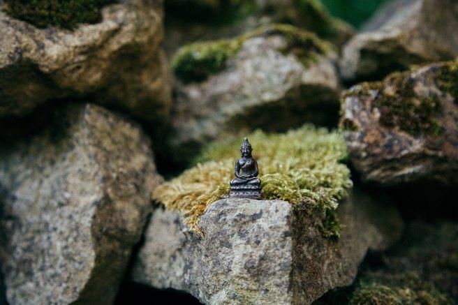 Tiny Buddha statue on a mossy rock