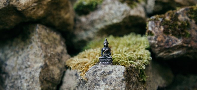 Tiny Buddha statue on a mossy rock