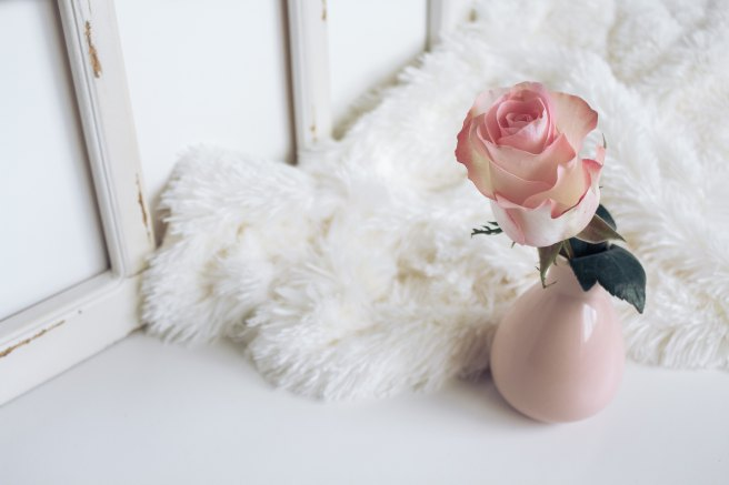 Rose in a vase with faux fur rug